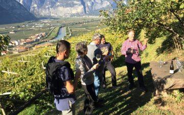 Trentino, al via DiVin Ottobre