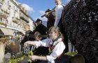 Merano_Festa dell'Uva