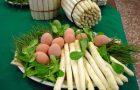 asparago bianco DOP_01